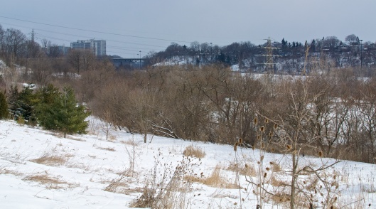 Mar_5_WalkaboutCrothers_15_2014-03-05_11-20-30_DSC_1376