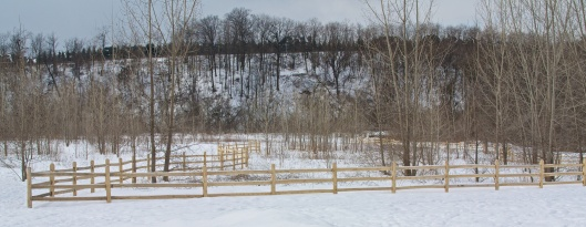Cottonwood Flats with a new protective fence