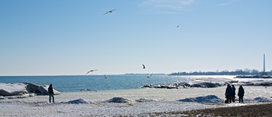 Mar_7_WalkaboutTheBeaches_79_2014-03-07_15-27-57_DSC_1531