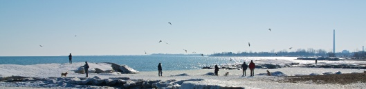 Mar_7_WalkaboutTheBeaches_85_2014-03-07_15-29-39_DSC_1537